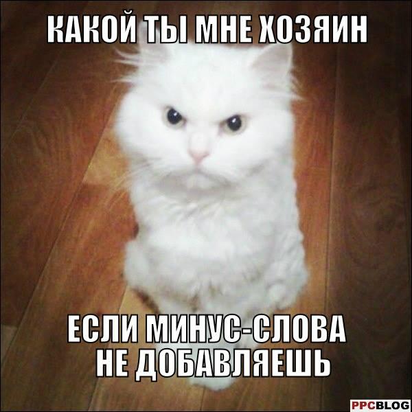 1609745_720011304749034_1248216543482065175_n